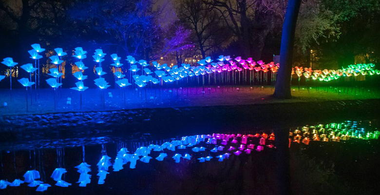 Фото: Canary Wharf Lights Festival
