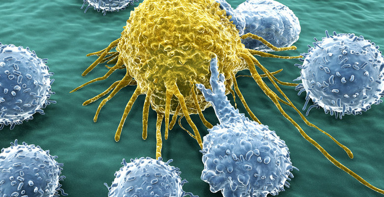 Viruses against cancer
